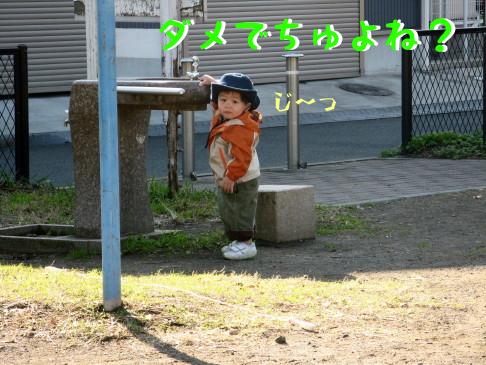 IMG_0031_5.jpg