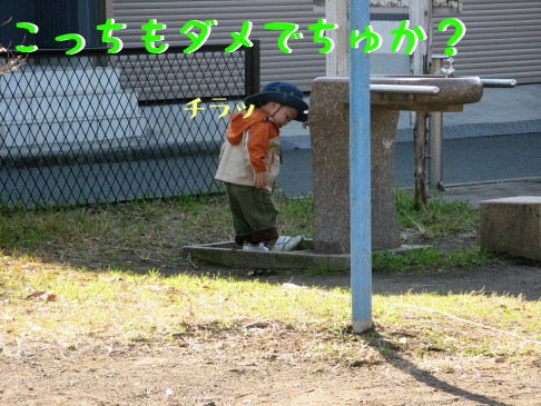 IMG_0032_5.jpg