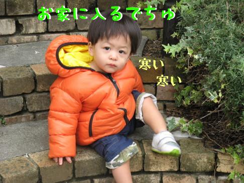 IMG_0038_5.jpg