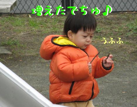 IMG_0038_6.jpg
