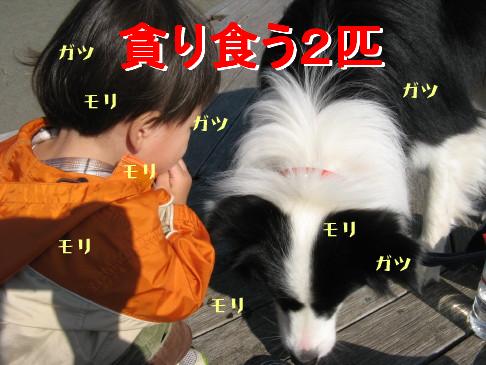 IMG_0042_5.jpg