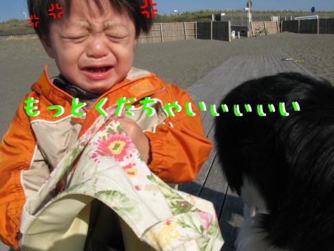 IMG_0043_5.jpg