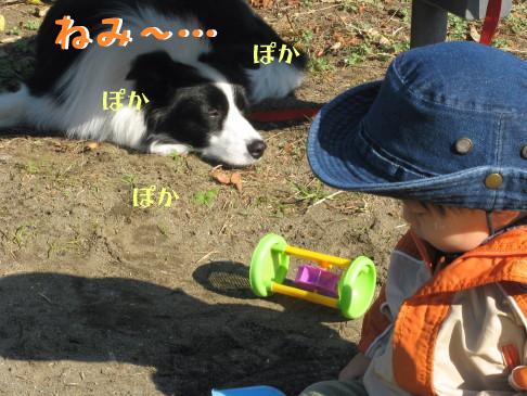 IMG_0045_3.jpg