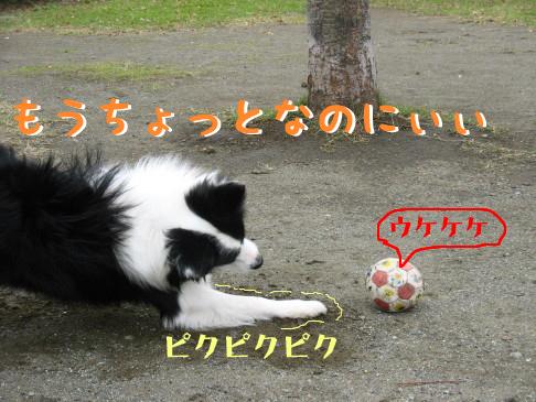 IMG_0049_3.jpg
