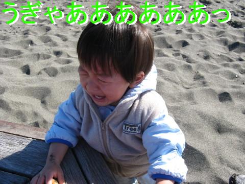IMG_0050_4.jpg