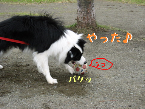 IMG_0051_5.jpg