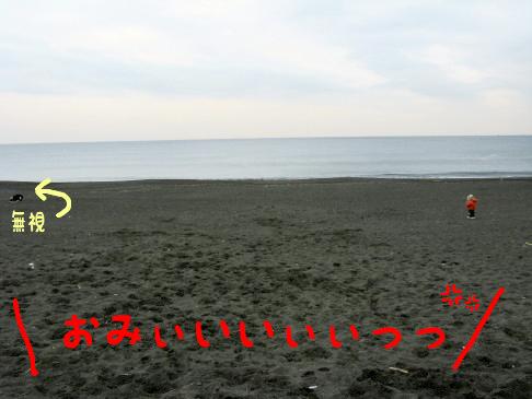 IMG_0061_2.jpg
