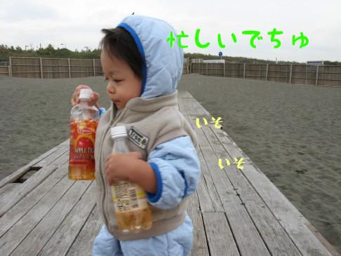 IMG_0065_5.jpg