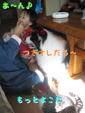 IMG_0103_1.jpg