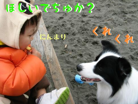 IMG_0104_1.jpg