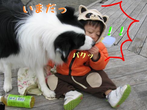IMG_0109_1.jpg