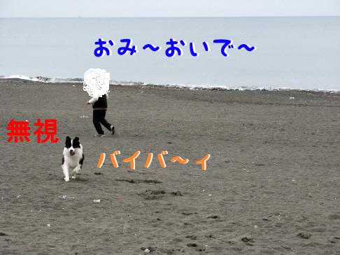 IMG_0125.jpg
