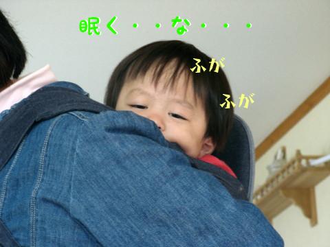 IMG_0166_1.jpg
