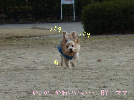 キュー(〃∇〃)ーン!!