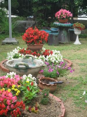 6月26日花壇