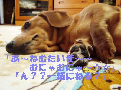 nemutai_convert_20110904172140 2