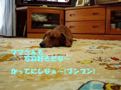 munyamunya_convert_20110904172237 2