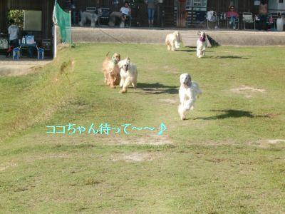 PO20091012_0048_1.jpg