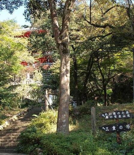 登山道入口 011