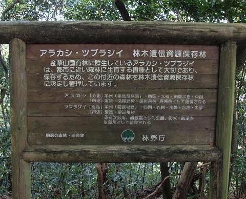 遺伝資源保存林看板 101