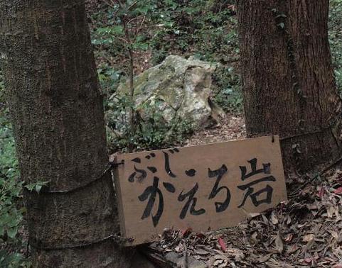 カエル岩 020