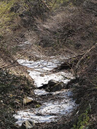 谷の雪 068