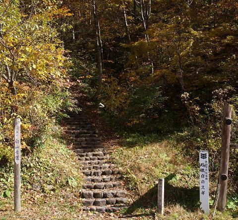古道登り口 011