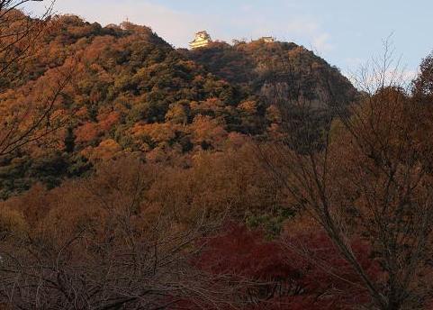 秋の金華山 054