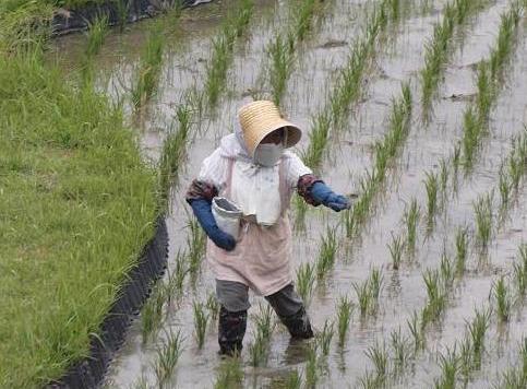 農作業 071