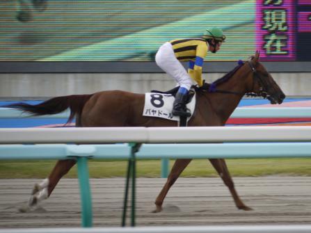 2011.08.14 札幌競馬場