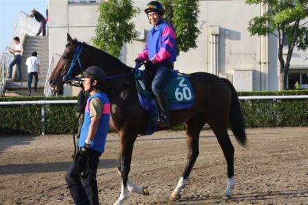 2011.08.03 札幌競馬場