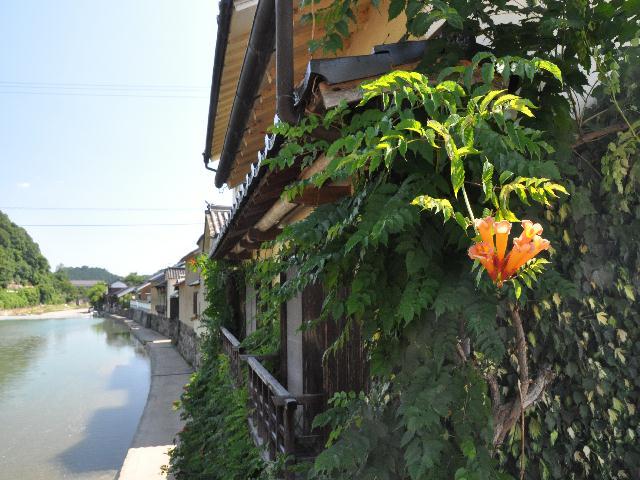 himawari1 108