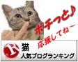 猫 人気ブログランキングへ