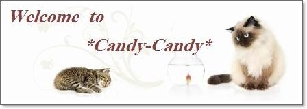 キャッテリー*Candy-Candy*