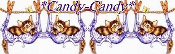 *Candy-Candy*