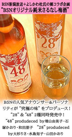 BSN純米さるなし梅酒