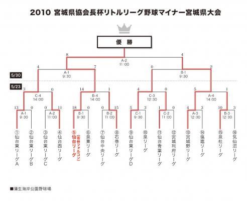 2010_minor_tournament.jpg