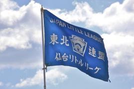 flag2010.jpg