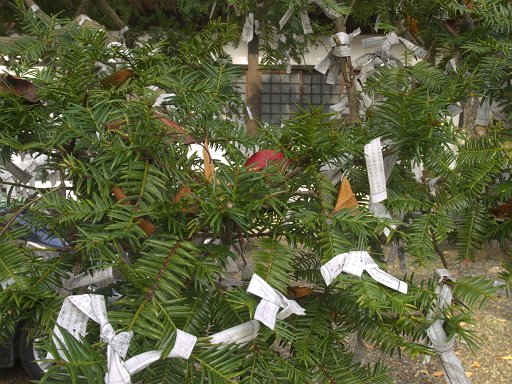 和のツリー