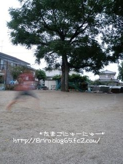 100928_01_s.jpg