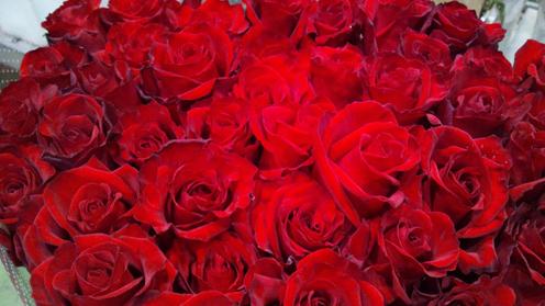 red-france0101.jpg