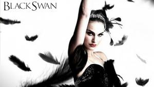 swan03.jpg