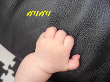 1_20100603215533.jpg