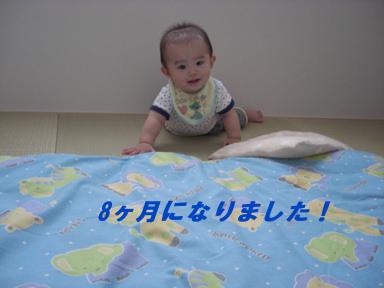 1_20100709170601.jpg