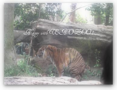4_20110505002937.jpg
