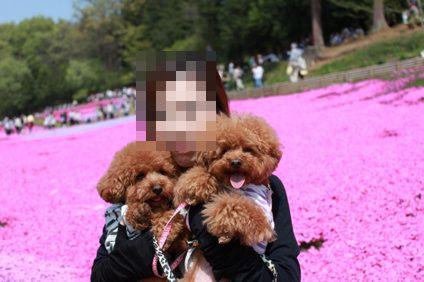 5_20100503215256.jpg
