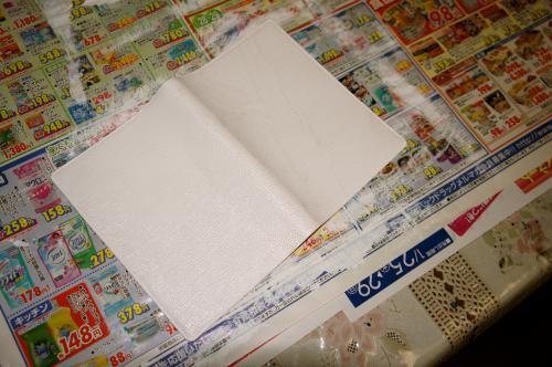DSC09739_convert_20120127205510.jpg