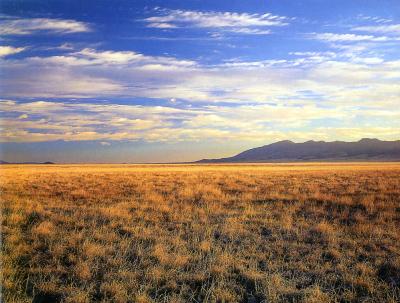 limca/Aug24,2012/New Mexico 砂漠