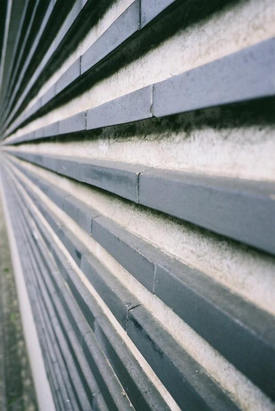 塀・・・こういう撮り方好きやからワンパターン(笑)
