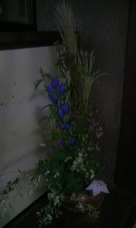 091004_144153秋の花